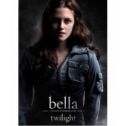 Bb Dakota Leather Jacket Twilight